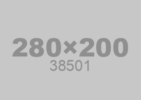 38501