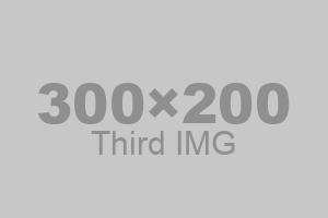 Third IMG - 300 x 200